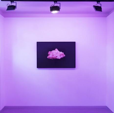 Jorge Isla en Kir Royal Gallery