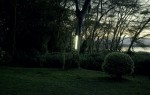 Johann Ryno de Wet _ Garden Tree Light_camara oscura