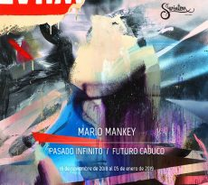 Mario Mankey - Swinton Gallery
