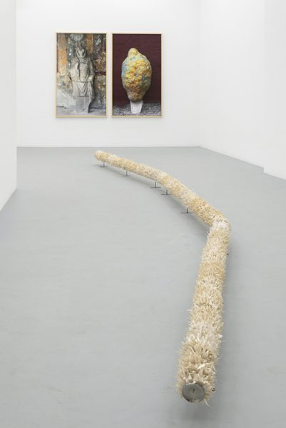 Dalila Gonçalves, Céu da boca, exhibition view