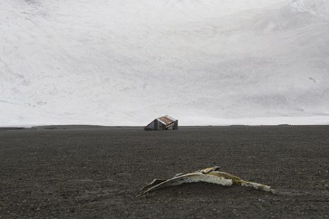 Han Sungpil - Deception Island, South Shetland Islands, Antarctic Ocean III
