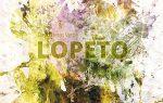 Pintar la música - David Heras Verde - Lopeto